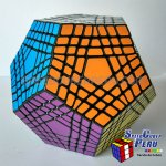 Dodecahedron Rubik Shengshou Teraminx Cube Puzzle